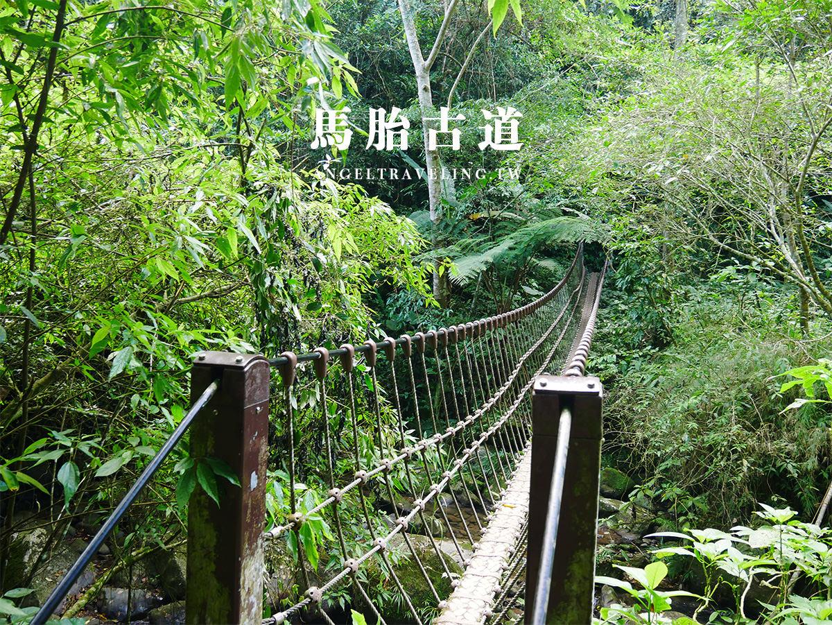 吊橋2-1200